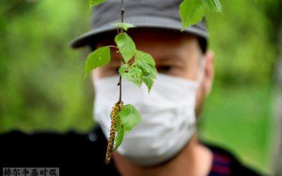 芬兰健康资讯:超高的花粉浓度,导致严重新冠并发症的基因,远程办公与心脏病