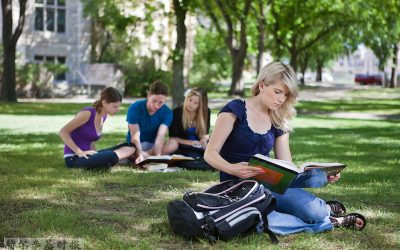 芬兰年轻人可以选择有哪些不同寻常的大学学位