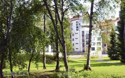 芬兰房地产市场继续保持繁忙,租赁市场开始反弹