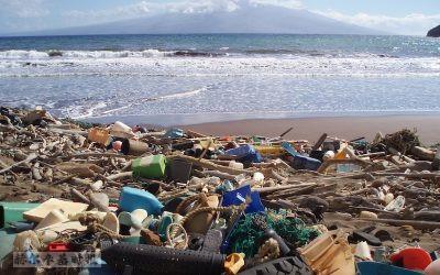 旅游业对塑料垃圾和污染采取行动