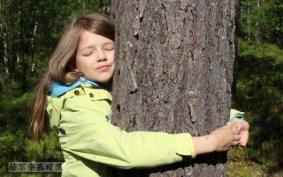 世界看芬兰:拥抱树木比赛、无人机送药、芬兰式阅读时间和低碳建筑